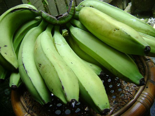 Jenis dan khasiat buah pisang untuk penderita diabetes, diet adalah